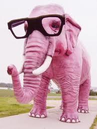 comment avoir une memoire d elephant